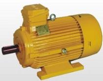 الکتروموتور ضد انفجار سور ای تی بی Sever ATB