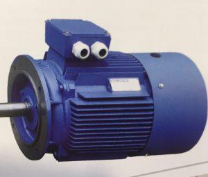 الکتروموتور فلنج دار Flanged electromotor