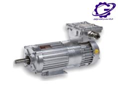 الکتروموتور ضد افنجار چمپ electric motor exx cemp
