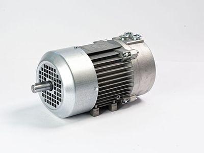 الکتروموتور ضد انفجار رائل Motor electric rael v80