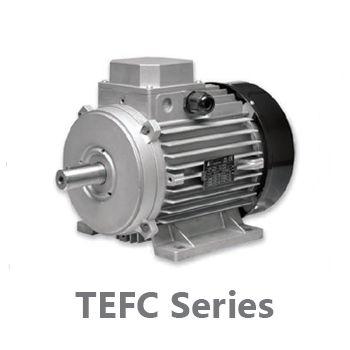الکتروموتور معمولی ایتال ویبراز  motr electric italmotors