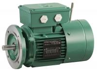 الکتروموتور ترمز دار لروی سومرbrake motor electric leroy somer