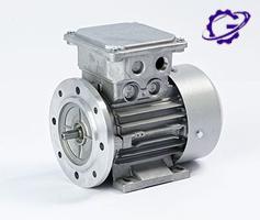 الکتروموتور ضد انفجار رائل EX MOTOR ELECTRIC RAEL