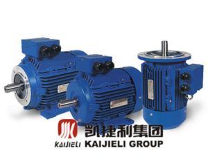 الکتروموتور کایجیلی MOTOR ELECTRIC KAIJIELI
