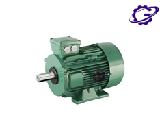 الکتروموتور لروی سومر motor electric leroy somer