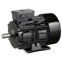 الکترو موتور دالاندر لروی سومرmotor electric dalander leroy somer