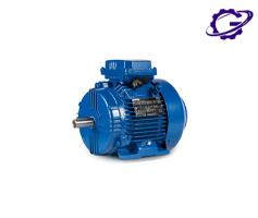 الکتروموتور چمپ chemp motor electric